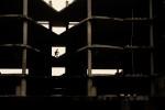 Incidental_Sunninghill_Silhouette